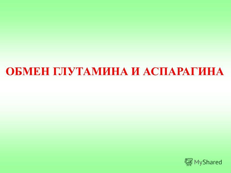 ОБМЕН ГЛУТАМИНА И АСПАРАГИНА