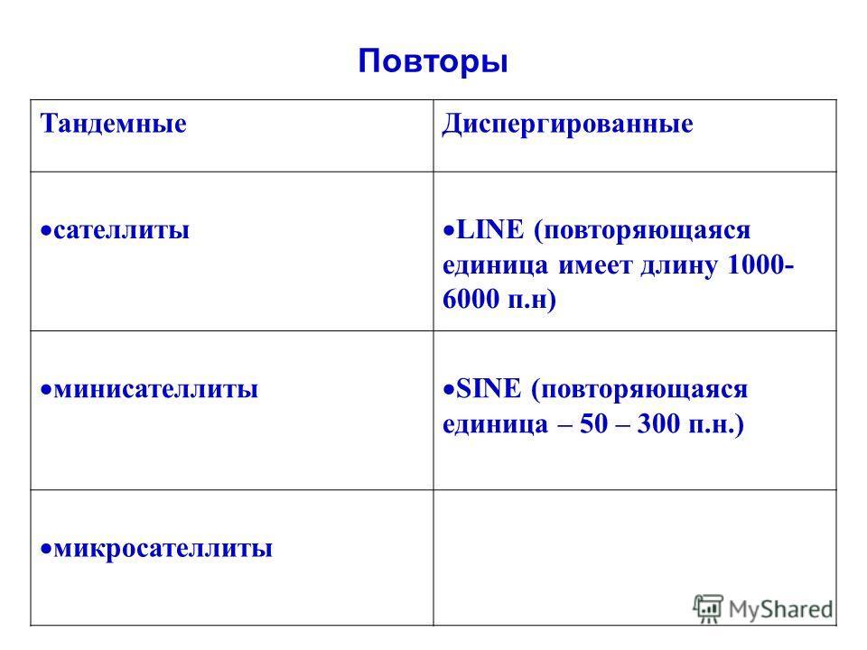 Повторы ТандемныеДиспергированные сателлиты LINE (повторяющаяся единица имеет длину 1000- 6000 п.н) минисателлиты SINE (повторяющаяся единица – 50 – 300 п.н.) микросателлиты
