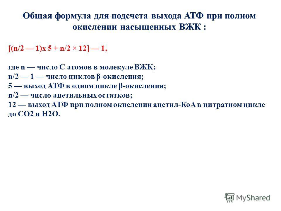 Общая формула для подсчета выхода АТФ при полном окислении насыщенных ВЖК : [(n/2 1)x 5 + n/2 × 12] 1, где n число С атомов в молекуле ВЖК; n/2 1 число циклов β-окисления; 5 выход АТФ в одном цикле β-окисления; n/2 число ацетильных остатков; 12 выход