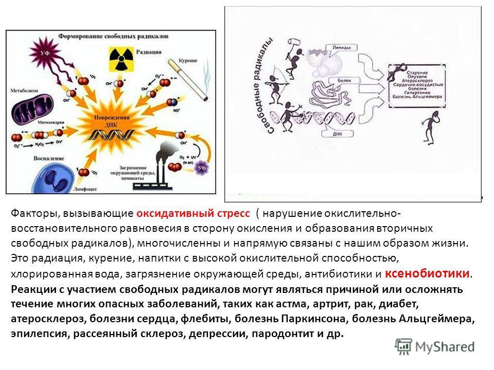 Факторы, вызывающие оксидативный стресс ( нарушение окислительно- восстановительного равновесия в сторону окисления и образования вторичных свободных радикалов), многочисленны и напрямую связаны с нашим образом жизни. Это радиация, курение, напитки с