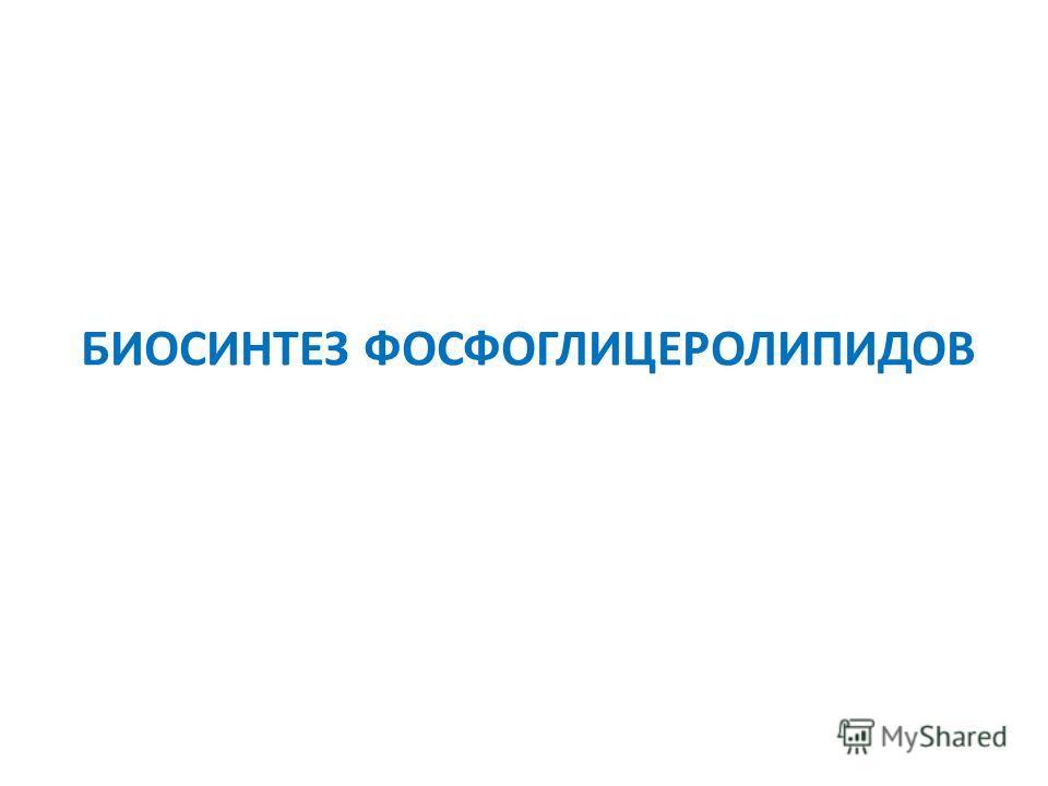 БИОСИНТЕЗ ФОСФОГЛИЦЕРОЛИПИДОВ