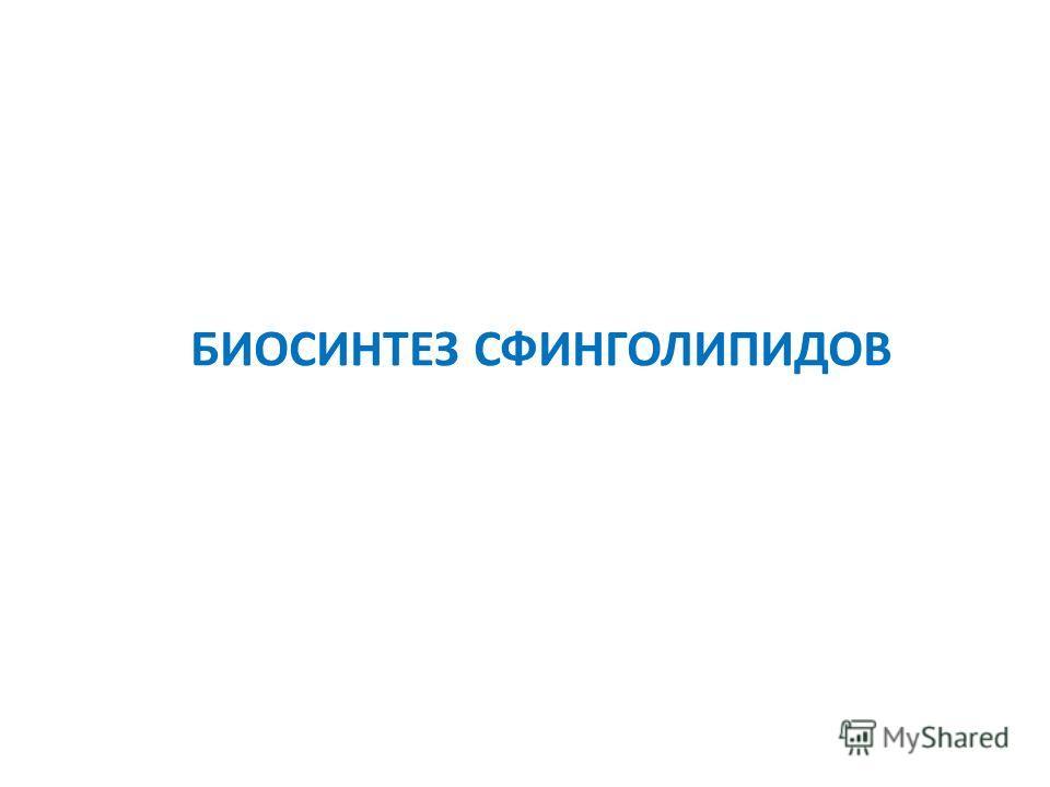 БИОСИНТЕЗ СФИНГОЛИПИДОВ