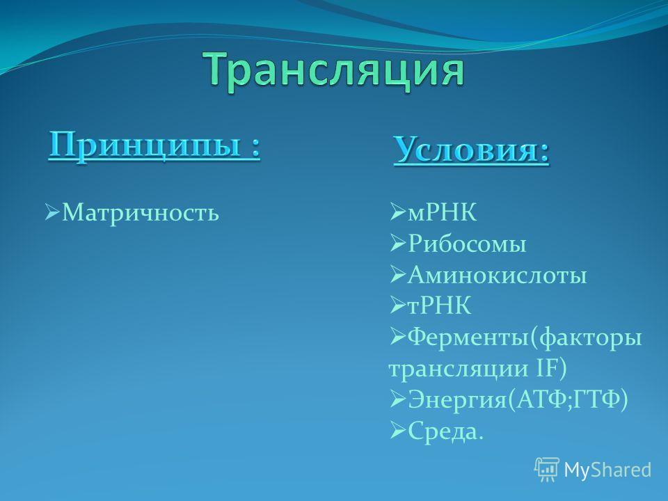 Матричность мРНК Рибосомы Аминокислоты тРНК Ферменты(факторы трансляции IF) Энергия(АТФ;ГТФ) Среда.