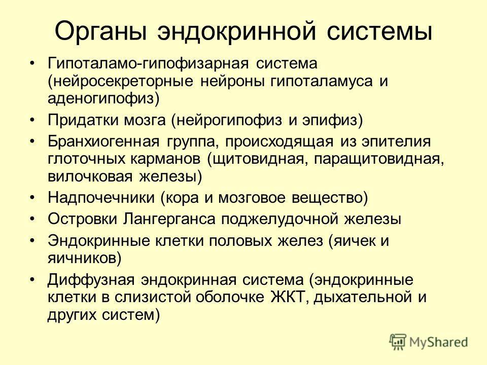 Органы эндокринной системы Гипоталамо-гипофизарная система (нейросекреторные нейроны гипоталамуса и аденогипофиз) Придатки мозга (нейрогипофиз и эпифиз) Бранхиогенная группа, происходящая из эпителия глоточных карманов (щитовидная, паращитовидная, ви