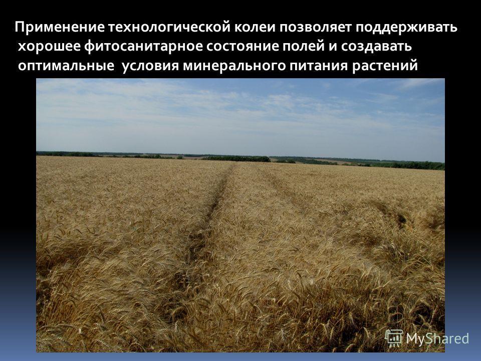 Применение технологической колеи позволяет поддерживать хорошее фитосанитарное состояние полей и создавать оптимальные условия минерального питания растений