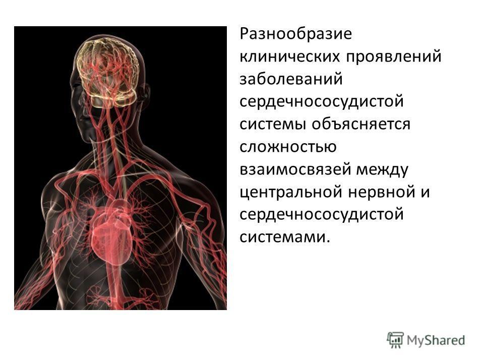 Разнообразие клинических проявлений заболеваний сердечнососудистой системы объясняется сложностью взаимосвязей между центральной нервной и сердечнососудистой системами.