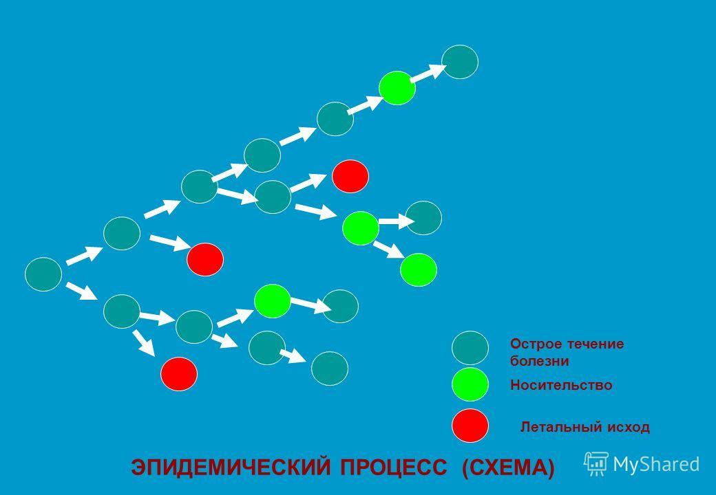 ЭПИДЕМИЧЕСКИЙ ПРОЦЕСС (СХЕМА) Летальный исход Носительство Острое течение болезни