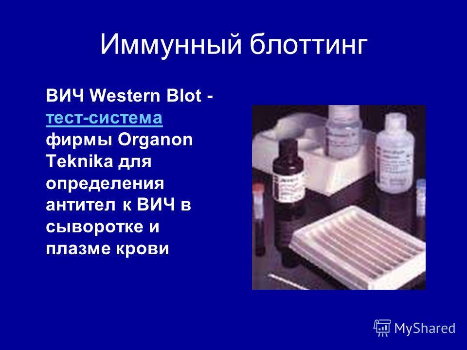Иммунный блоттинг ВИЧ Western Blot - тест-система фирмы Organon Teknika для определения антител к ВИЧ в сыворотке и плазме крови тест-система