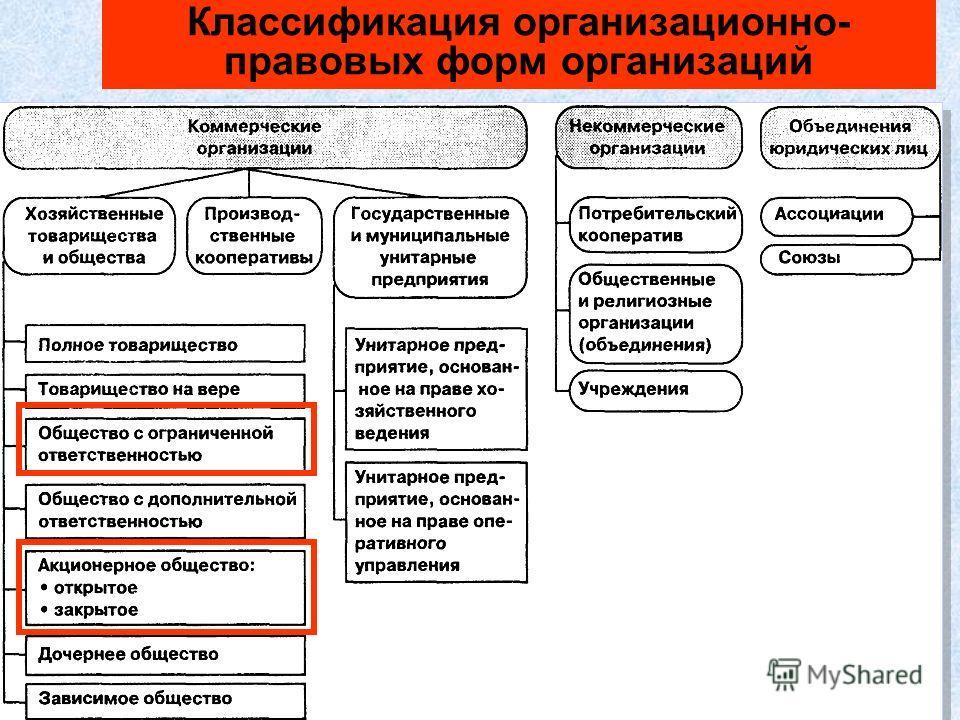 48 Классификация организационно- правовых форм организаций