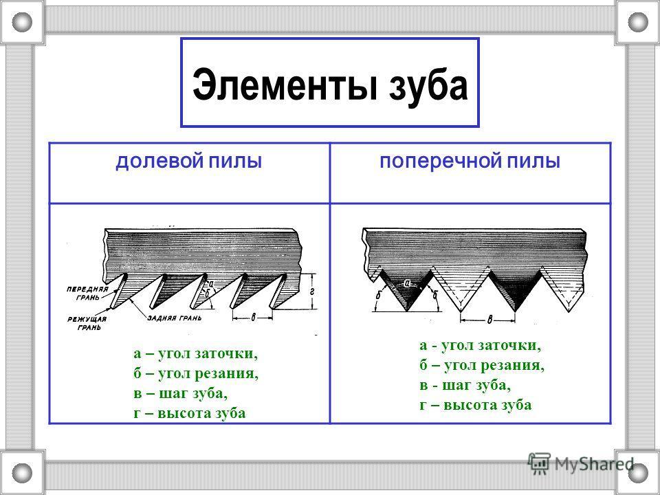 Элементы зуба долевой пилыпоперечной пилы а – угол заточки, б – угол резания, в – шаг зуба, г – высота зуба а - угол заточки, б – угол резания, в - шаг зуба, г – высота зуба