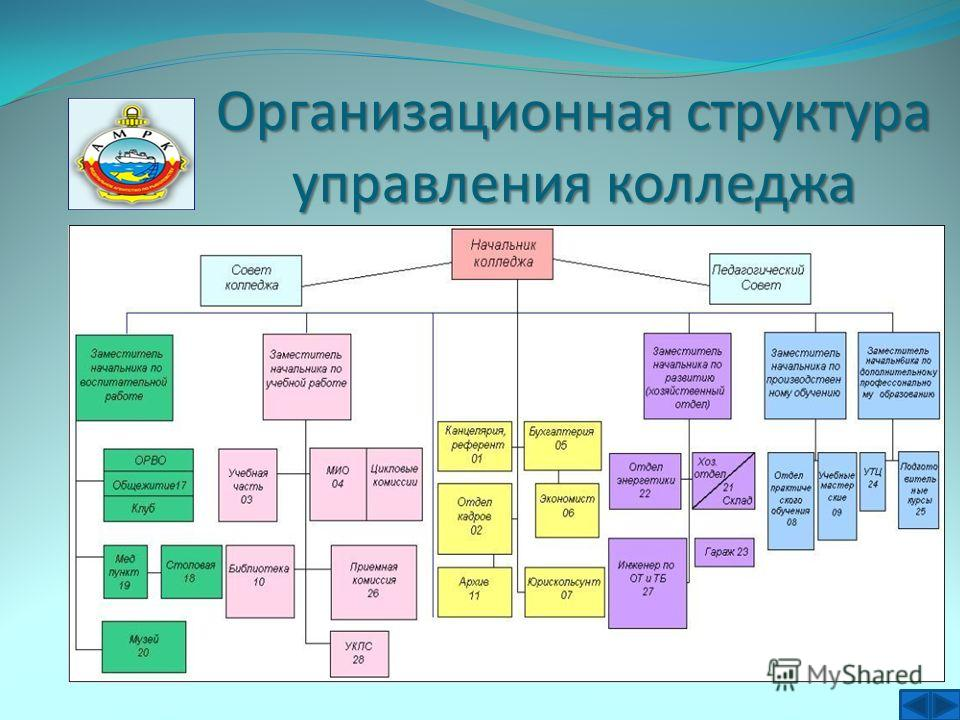 Организационная структура управления колледжа
