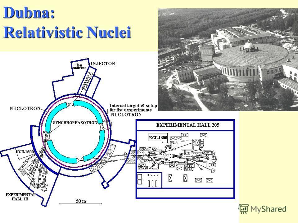 Dubna: Relativistic Nuclei
