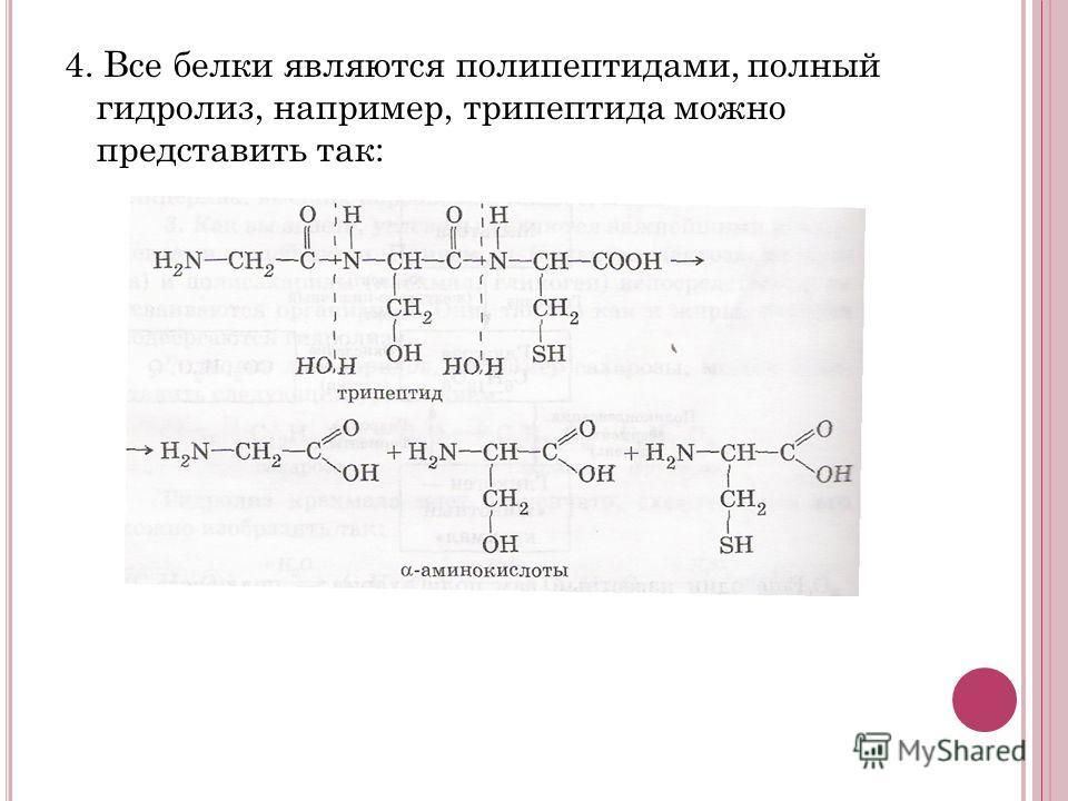 3. Гидролиз дисахаридов, например сахарозы, можно представить следующим уравнением: Гидролиз крахмала идет ступенчато, схематически его можно изобразить так: