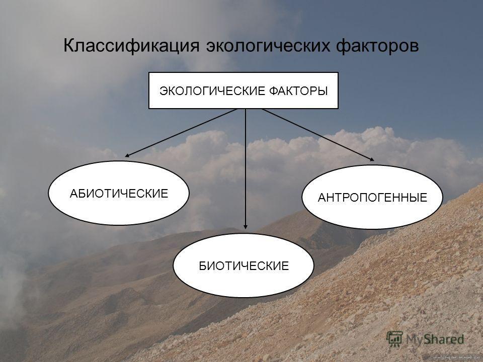 Классификация экологических факторов АБИОТИЧЕСКИЕ БИОТИЧЕСКИЕ АНТРОПОГЕННЫЕ ЭКОЛОГИЧЕСКИЕ ФАКТОРЫ
