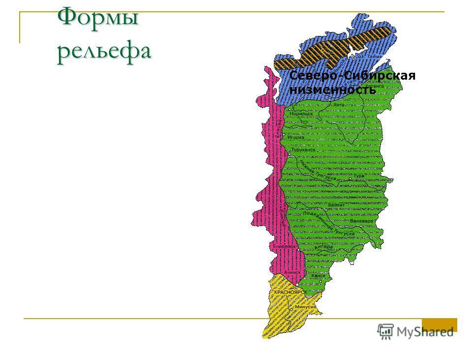 Формы рельефа Северо-Сибирская низменность