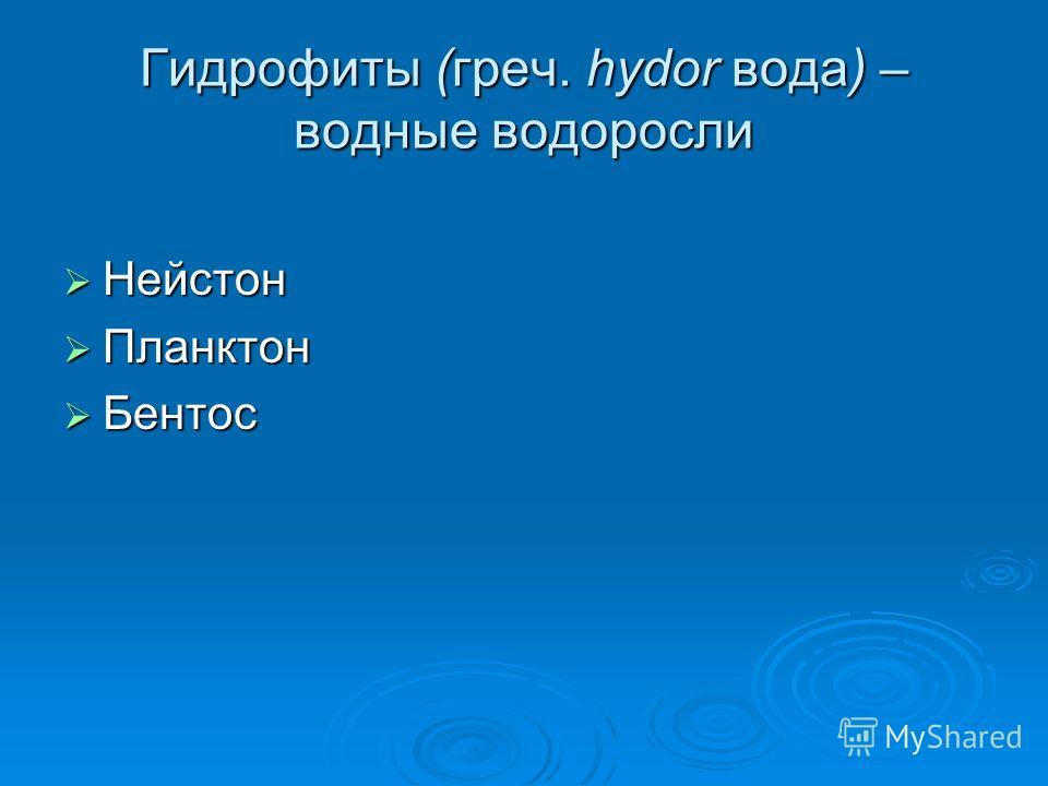 Гидрофиты (греч. hydor вода) – водные водоросли Нейстон Нейстон Планктон Планктон Бентос Бентос