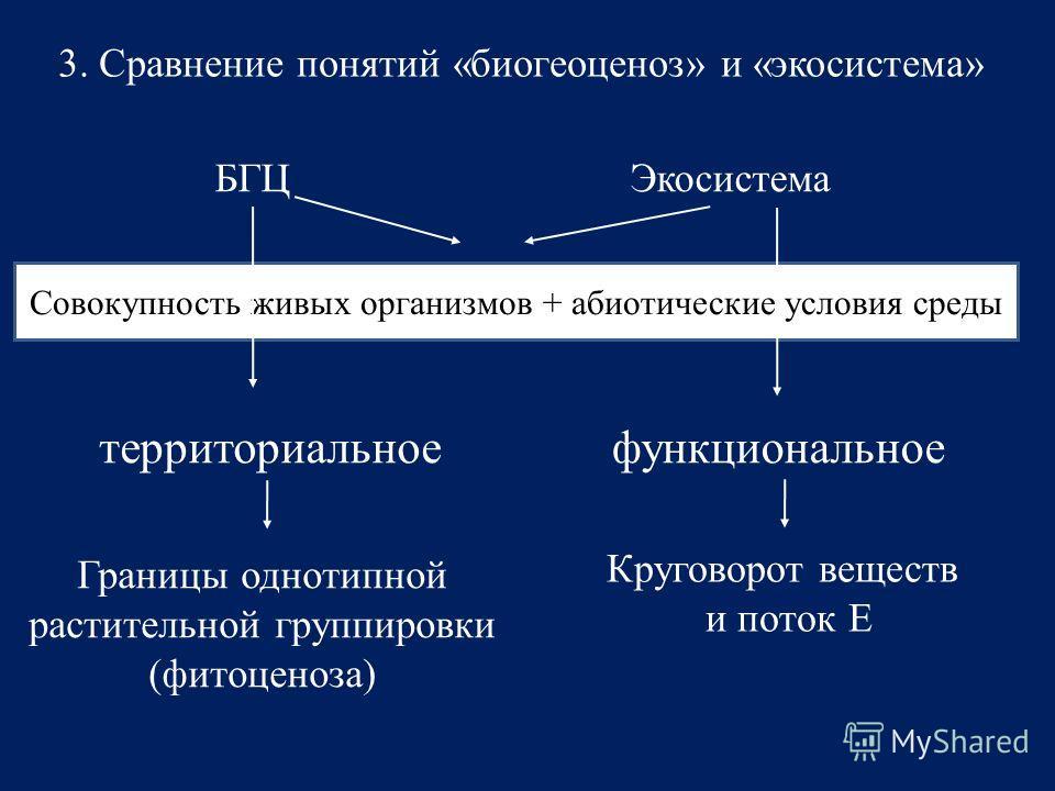 3. Сравнение понятий «биогеоценоз» и «экосистема» БГЦЭкосистема Совокупность живых организмов + абиотические условия среды территориальноефункциональное Круговорот веществ и поток Е Границы однотипной растительной группировки (фитоценоза)