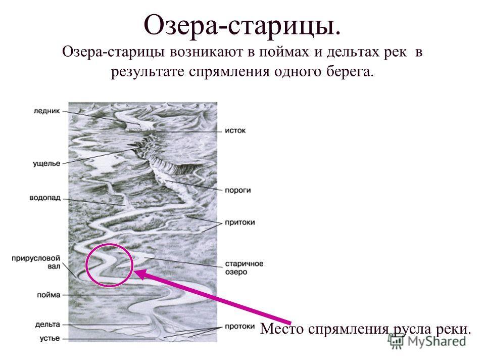 Озера-старицы. Озера-старицы возникают в поймах и дельтах рек в результате спрямления одного берега. Место спрямления русла реки.