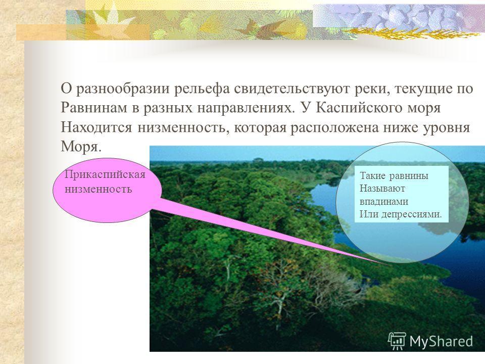 О разнообразии рельефа свидетельствуют реки, текущие по Равнинам в разных направлениях. У Каспийского моря Находится низменность, которая расположена ниже уровня Моря. Прикаспийская низменность Такие равнины Называют впадинами Или депрессиями.