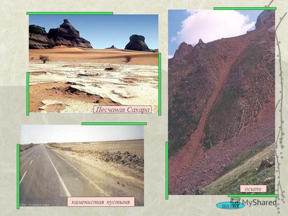 каменистая пустыня осыпи Песчаная Сахара назад