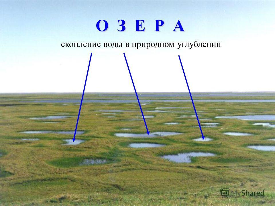 О З Е Р А скопление воды в природном углублении