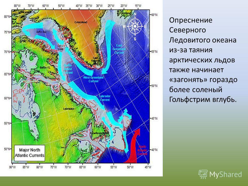 Опреснение Северного Ледовитого океана из-за таяния арктических льдов также начинает «загонять» гораздо более соленый Гольфстрим вглубь.