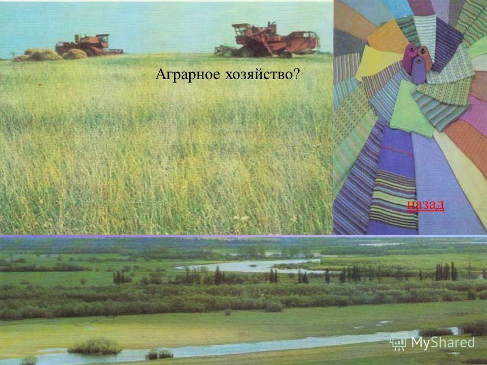 Аграрное хозяйство? назад