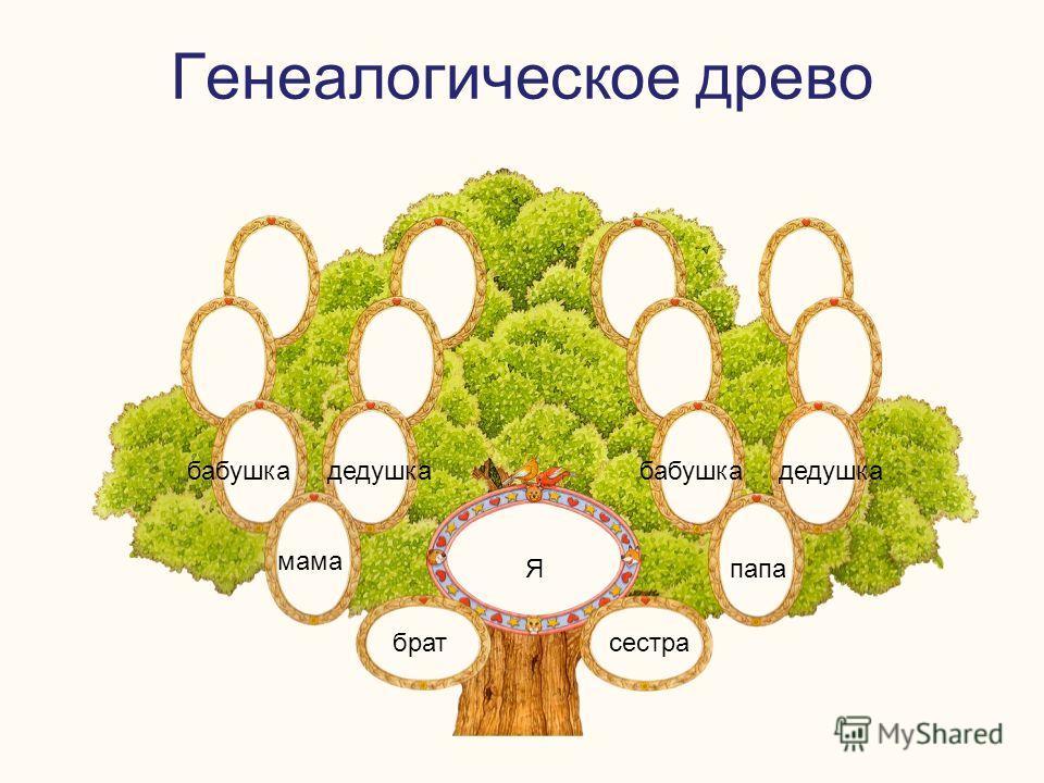 Генеалогическое древо Я братсестра мама папа бабушкадедушкабабушкадедушка