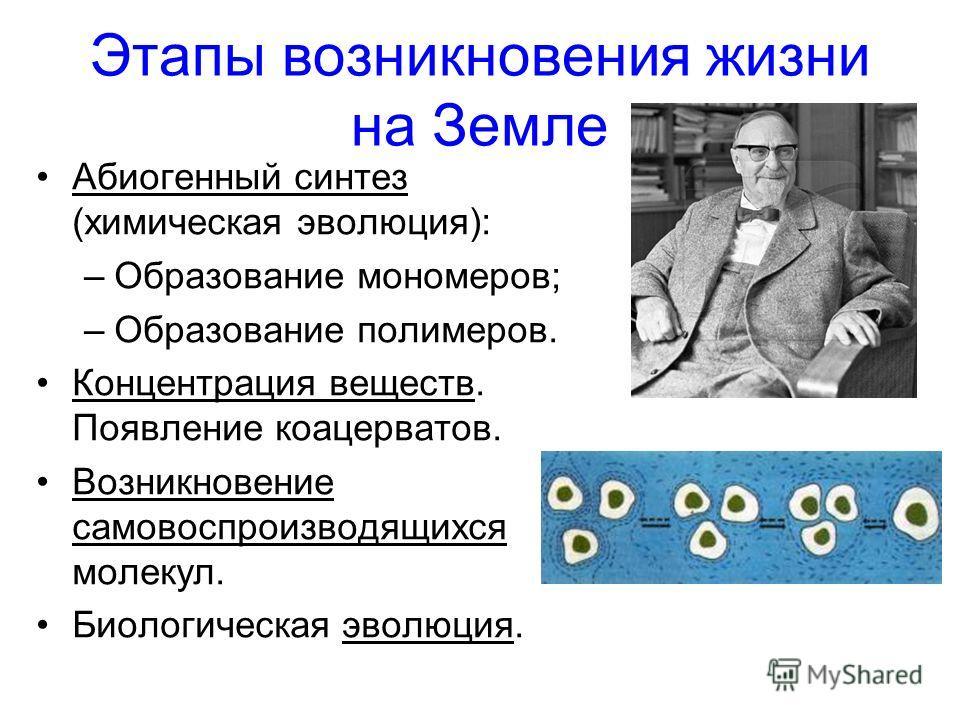Этапы возникновения жизни на Земле Абиогенный синтез (химическая эволюция): –Образование мономеров; –Образование полимеров. Концентрация веществ. Появление коацерватов. Возникновение самовоспроизводящихся молекул. Биологическая эволюция.