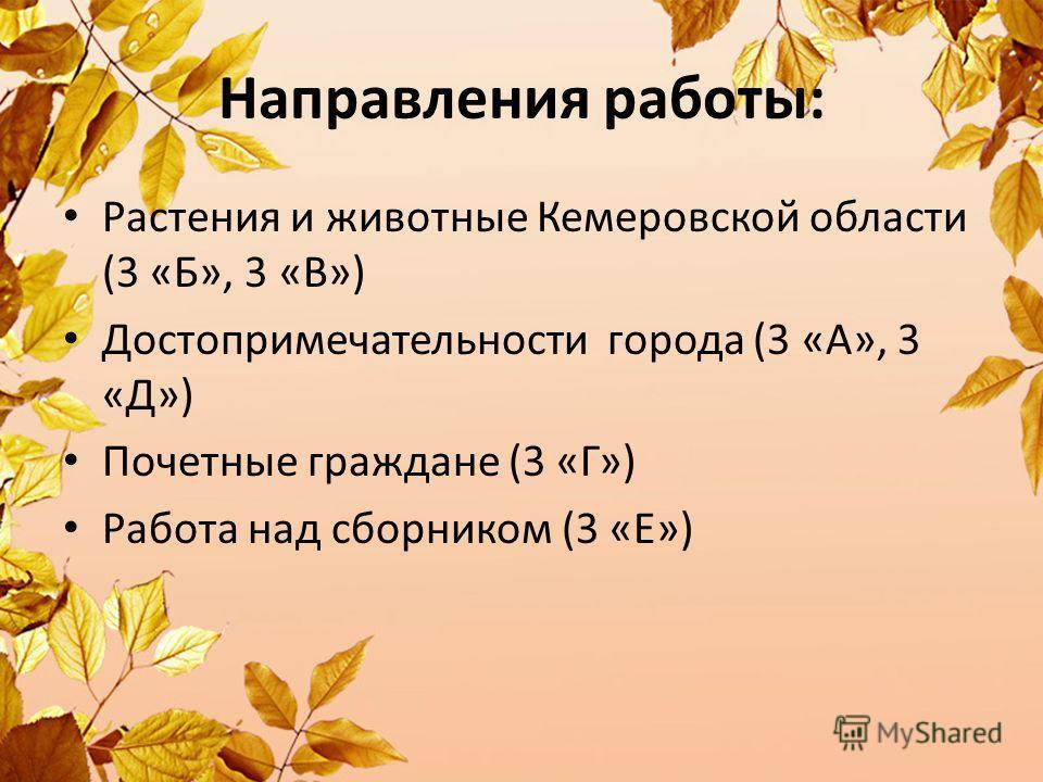 Направления работы: Растения и животные Кемеровской области (3 «Б», 3 «В») Достопримечательности города (3 «А», 3 «Д») Почетные граждане (3 «Г») Работа над сборником (3 «Е»)