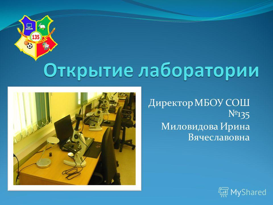 Директор МБОУ СОШ 135 Миловидова Ирина Вячеславовна