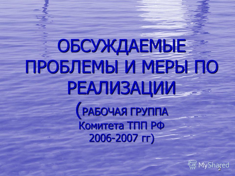 2 ОБСУЖДАЕМЫЕ ПРОБЛЕМЫ И МЕРЫ ПО РЕАЛИЗАЦИИ ( РАБОЧАЯ ГРУППА Комитета ТПП РФ 2006-2007 гг)