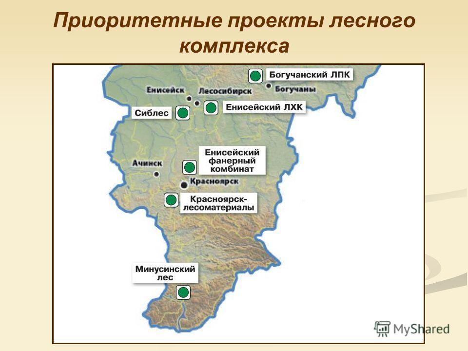 Приоритетные проекты лесного комплекса