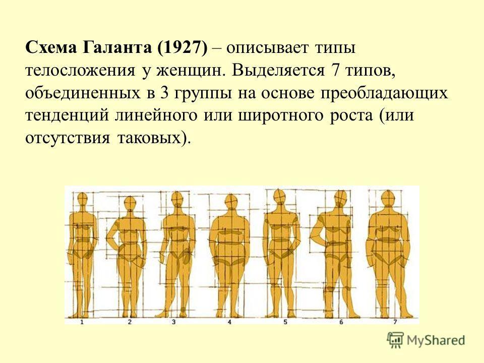 Схема Галанта (1927) – описывает типы телосложения у женщин. Выделяется 7 типов, объединенных в 3 группы на основе преобладающих тенденций линейного или широтного роста (или отсутствия таковых).