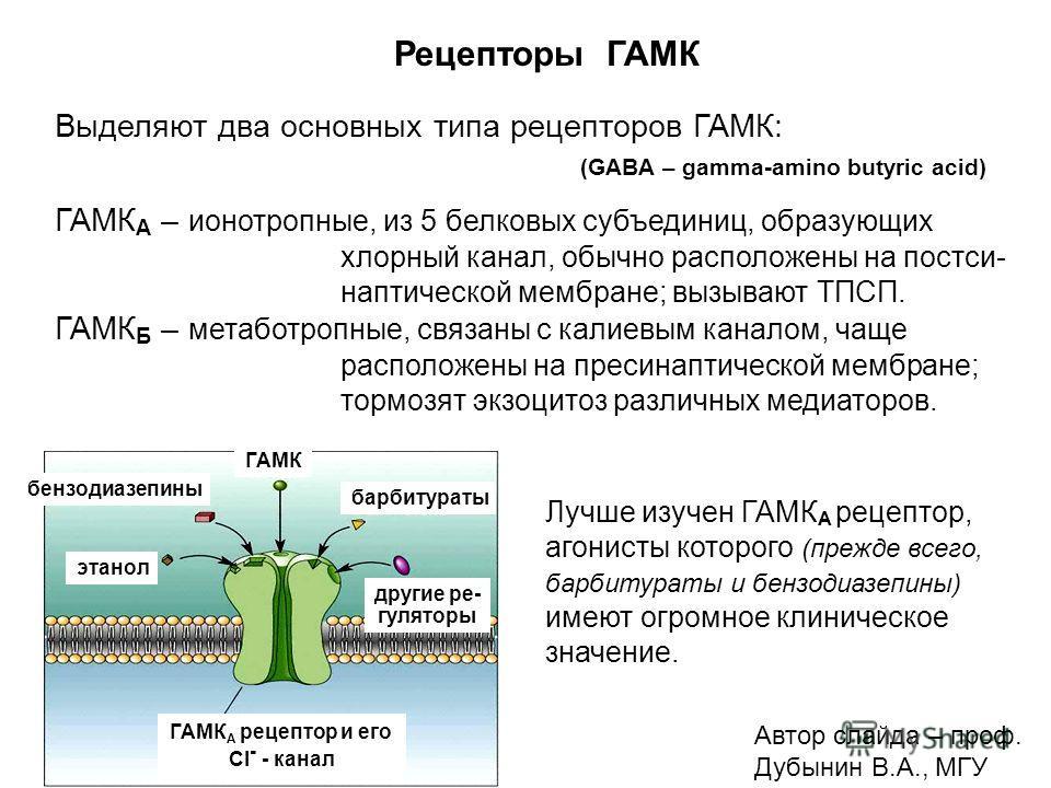 Рецепторы ГАМК Выделяют два основных типа рецепторов ГАМК: (GABA – gamma-amino butyric acid) ГАМК А – ионотропные, из 5 белковых субъединиц, образующих хлорный канал, обычно расположены на постси- наптической мембране; вызывают ТПСП. ГАМК Б – метабот