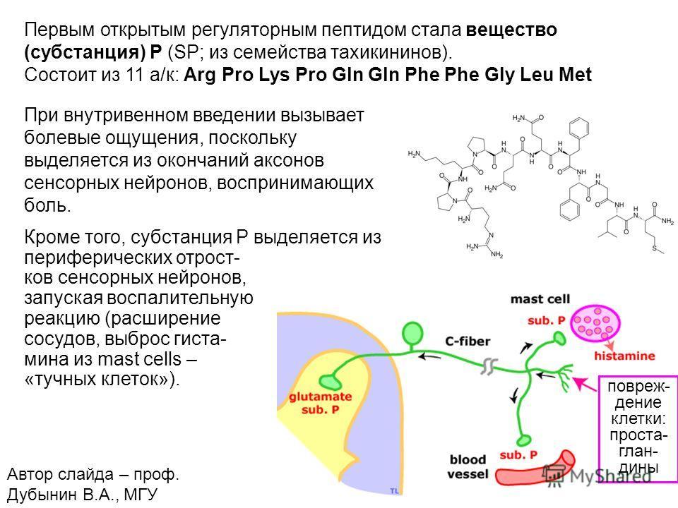 7 Первым открытым регуляторным пептидом стала вещество (субстанция) Р (SP; из семейства тахикининов). Состоит из 11 а/к: Arg Pro Lys Pro Gln Gln Phe Phe Gly Leu Met При внутривенном введении вызывает болевые ощущения, поскольку выделяется из окончани