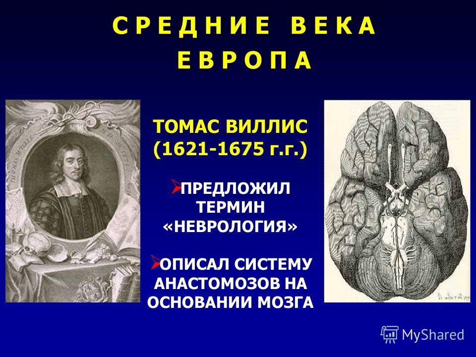 ТОМАС ВИЛЛИС (1621-1675 г.г.) ПРЕДЛОЖИЛ ТЕРМИН «НЕВРОЛОГИЯ» ОПИСАЛ СИСТЕМУ АНАСТОМОЗОВ НА ОСНОВАНИИ МОЗГА С Р Е Д Н И Е В Е К А Е В Р О П А