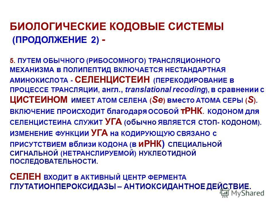БИОЛОГИЧЕСКИЕ КОДОВЫЕ СИСТЕМЫ (ПРОДОЛЖЕНИЕ 2) - 5. ПУТЕМ ОБЫЧНОГО (РИБОСОМНОГО) ТРАНСЛЯЦИОННОГО МЕХАНИЗМА в ПОЛИПЕПТИД ВКЛЮЧАЕТСЯ НЕСТАНДАРТНАЯ АМИНОКИСЛОТА - СЕЛЕНЦИСТЕИН (ПЕРЕКОДИРОВАНИЕ в ПРОЦЕССЕ ТРАНСЛЯЦИИ, англ., translational recoding ), в сра