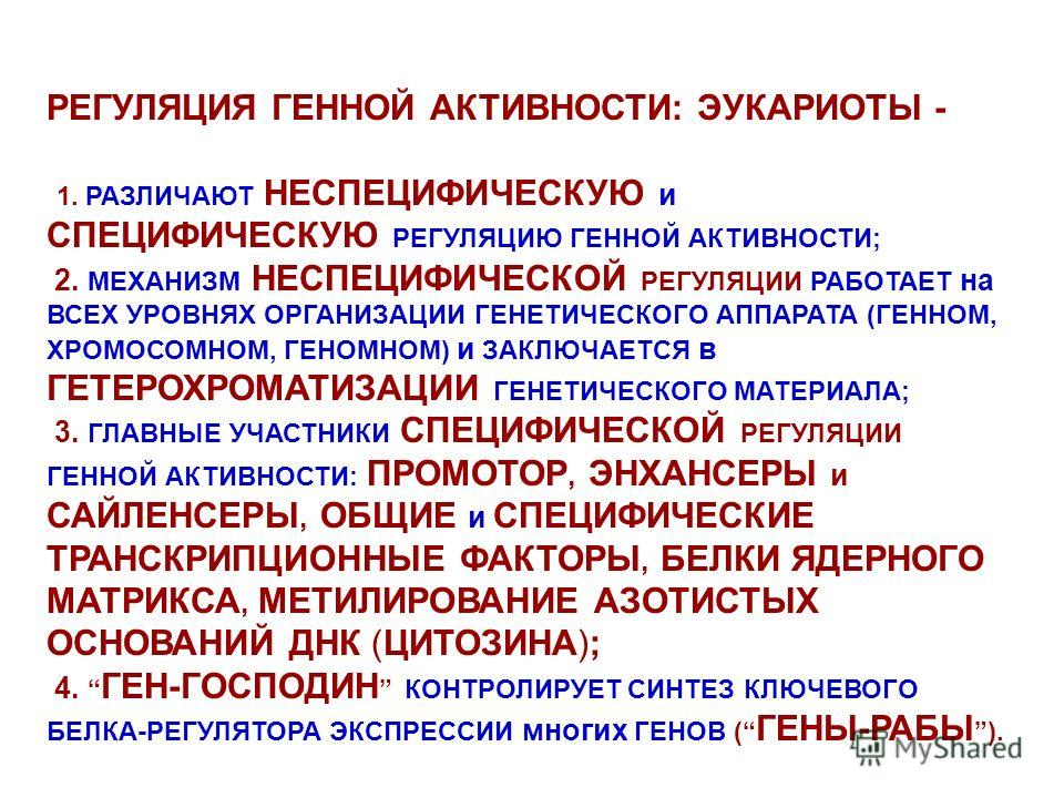 РЕГУЛЯЦИЯ ГЕННОЙ АКТИВНОСТИ: ЭУКАРИОТЫ - 1. РАЗЛИЧАЮТ НЕСПЕЦИФИЧЕСКУЮ и СПЕЦИФИЧЕСКУЮ РЕГУЛЯЦИЮ ГЕННОЙ АКТИВНОСТИ; 2. МЕХАНИЗМ НЕСПЕЦИФИЧЕСКОЙ РЕГУЛЯЦИИ РАБОТАЕТ на ВСЕХ УРОВНЯХ ОРГАНИЗАЦИИ ГЕНЕТИЧЕСКОГО АППАРАТА (ГЕННОМ, ХРОМОСОМНОМ, ГЕНОМНОМ) и ЗАК