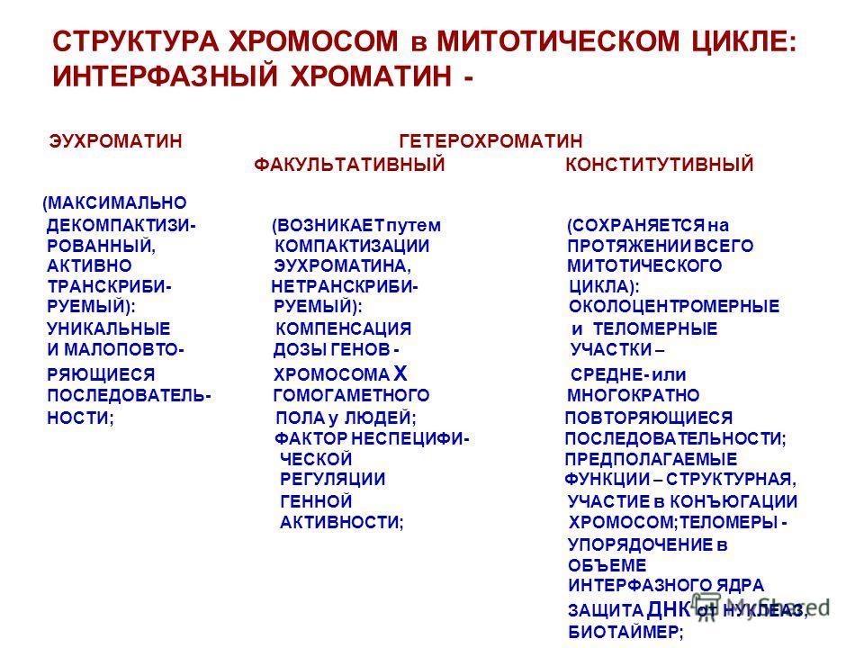 СТРУКТУРА ХРОМОСОМ в МИТОТИЧЕСКОМ ЦИКЛЕ: ИНТЕРФАЗНЫЙ ХРОМАТИН - ЭУХРОМАТИН ГЕТЕРОХРОМАТИН ФАКУЛЬТАТИВНЫЙ КОНСТИТУТИВНЫЙ (МАКСИМАЛЬНО ДЕКОМПАКТИЗИ- (ВОЗНИКАЕТ путем (СОХРАНЯЕТСЯ на РОВАННЫЙ, КОМПАКТИЗАЦИИ ПРОТЯЖЕНИИ ВСЕГО АКТИВНО ЭУХРОМАТИНА, МИТОТИЧЕ