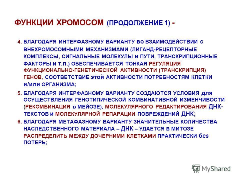 ФУНКЦИИ ХРОМОСОМ (ПРОДОЛЖЕНИЕ 1) - 4. БЛАГОДАРЯ ИНТЕРФАЗНОМУ ВАРИАНТУ во ВЗАИМОДЕЙСТВИИ с ВНЕХРОМОСОМНЫМИ МЕХАНИЗМАМИ (ЛИГАНД-РЕЦЕПТОРНЫЕ КОМПЛЕКСЫ, СИГНАЛЬНЫЕ МОЛЕКУЛЫ и ПУТИ, ТРАНСКРИПЦИОННЫЕ ФАКТОРЫ и т.п.) ОБЕСПЕЧИВАЕТСЯ ТОНКАЯ РЕГУЛЯЦИЯ ФУНКЦИОН