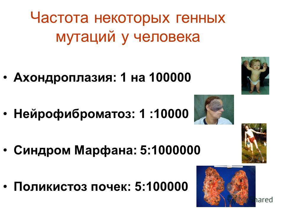Частота некоторых генных мутаций у человека Ахондроплазия: 1 на 100000 Нейрофиброматоз: 1 :10000 Синдром Марфана: 5:1000000 Поликистоз почек: 5:100000