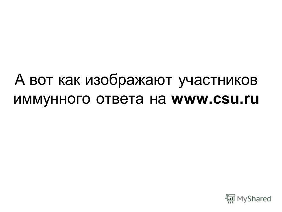 А вот как изображают участников иммунного ответа на www.csu.ru