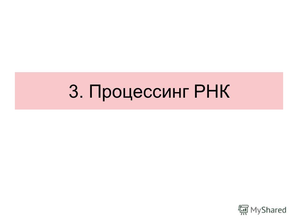 3. Процессинг РНК