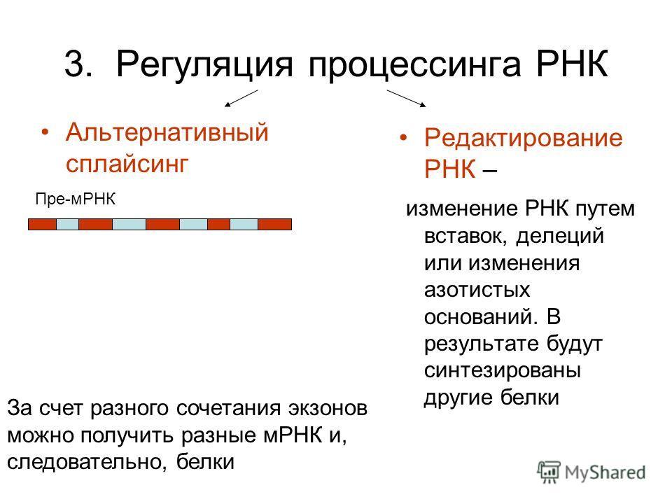 3. Регуляция процессинга РНК Альтернативный сплайсинг Редактирование РНК – изменение РНК путем вставок, делеций или изменения азотистых оснований. В результате будут синтезированы другие белки Пре-мРНК За счет разного сочетания экзонов можно получить