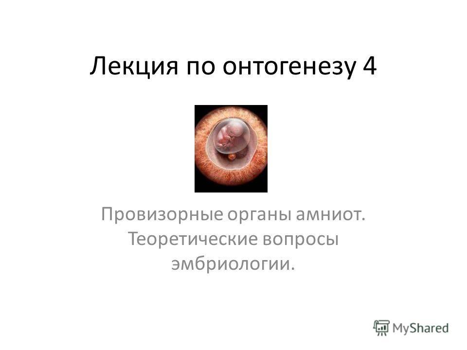 Лекция по онтогенезу 4 Провизорные органы амниот. Теоретические вопросы эмбриологии.