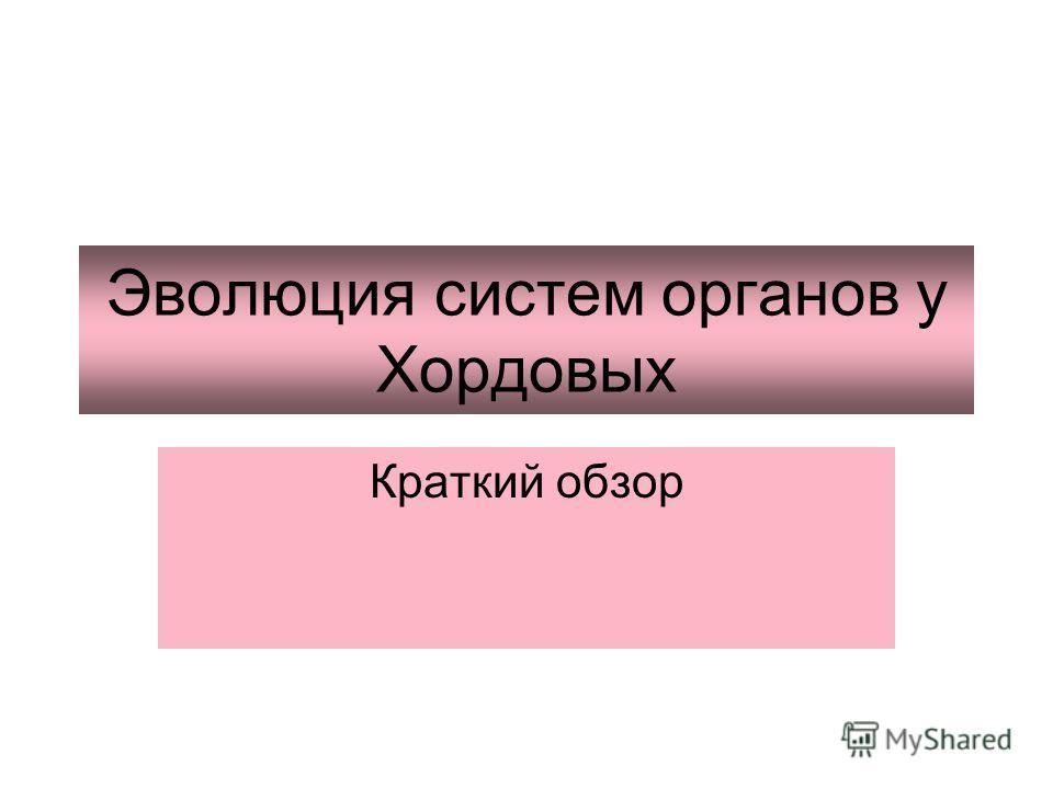 Эволюция систем органов у Хордовых Краткий обзор