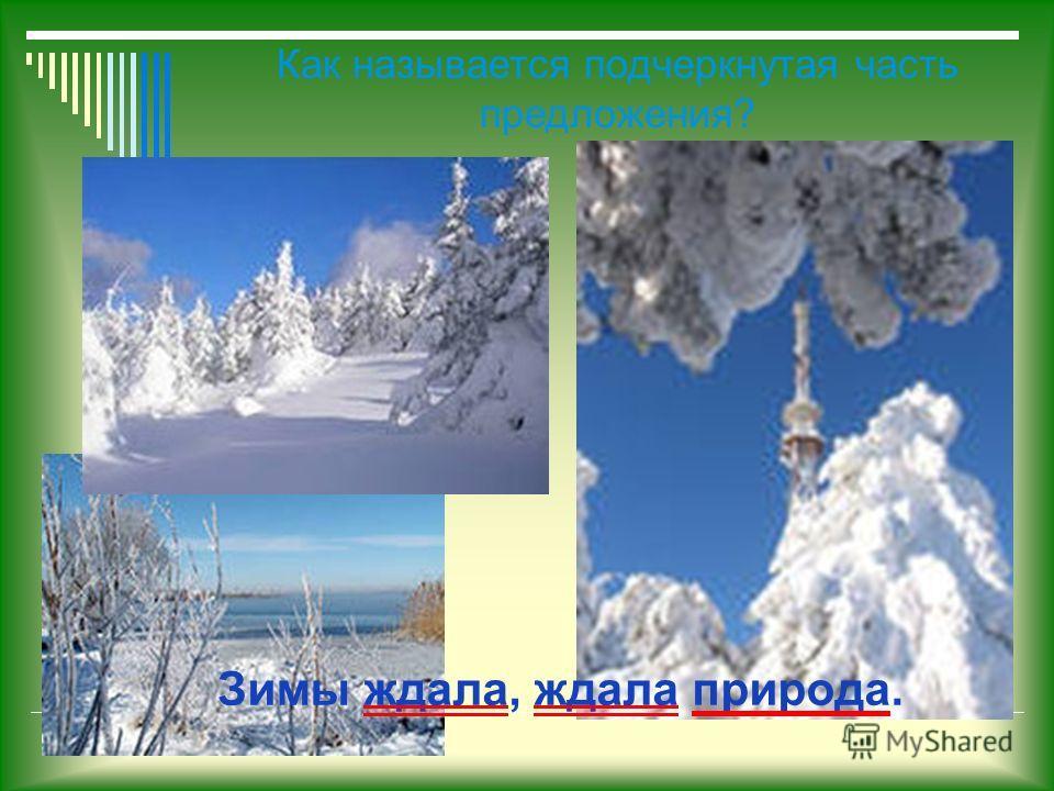 Зимы ждала, ждала природа. Как называется подчеркнутая часть предложения?