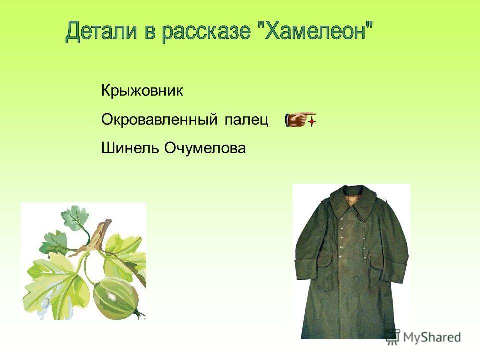 Крыжовник Окровавленный палец Шинель Очумелова