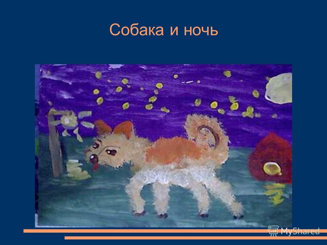 Собака и ночь